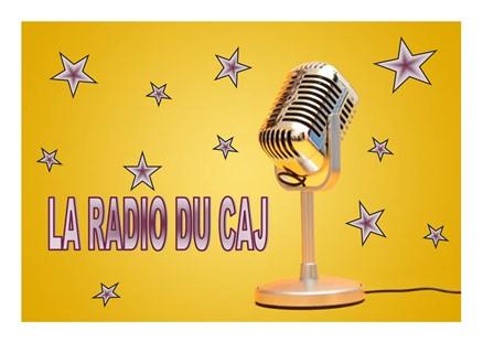 LOGO RADIO (438 x 310)